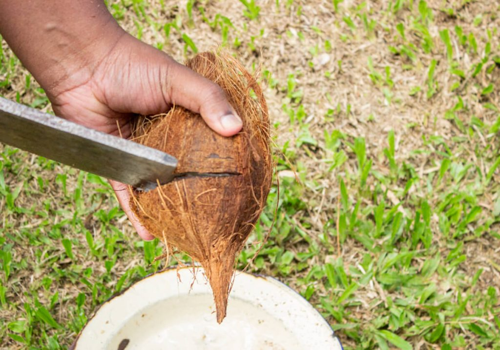 cracking brown coconut